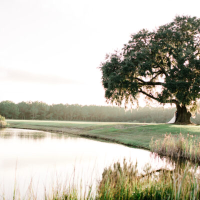 Plan Your Outdoor Destination Wedding at Wingate Place